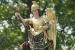 Liscia San Michele Arcangelo, statua del Santo