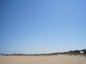 dune di petacciato marina