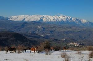 paesaggio da Monte Castel Fraiano