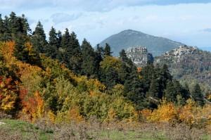 Abetina di Rosello in provincia di Chieti