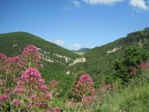 vallone di Caccavone