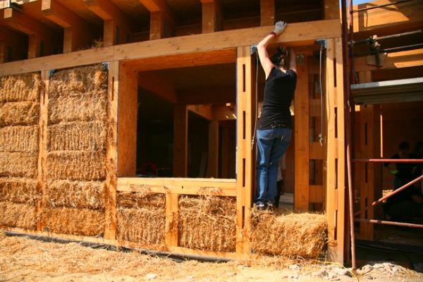 Riabitare il futuro laboratori di architettura ecologica for Schizzo di piani di casa gratuiti