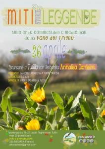 piante medicinali tufillo