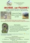 orchidee_che_passione_celenza_sul_trigno_4_aprile_2015